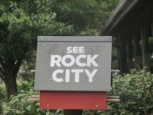 picture of bird house with Rock City on it